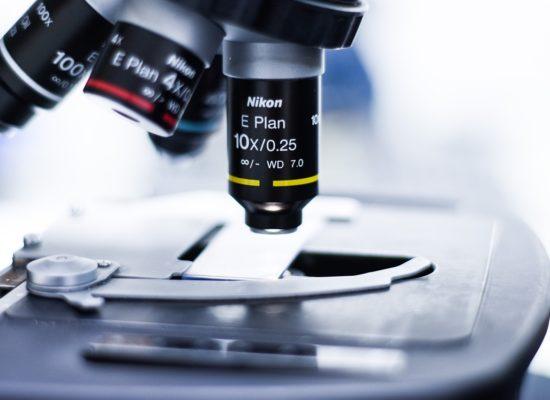 Científicos españoles publican un importante avance en la investigación para combatir la Artrosis